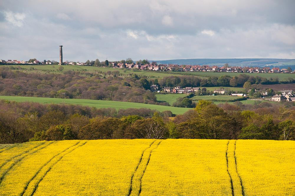 12 consejos para fotografiar campos de cultivo de forma creativa