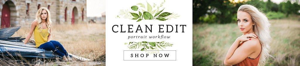 Limpiar Editar presets de Lightroom