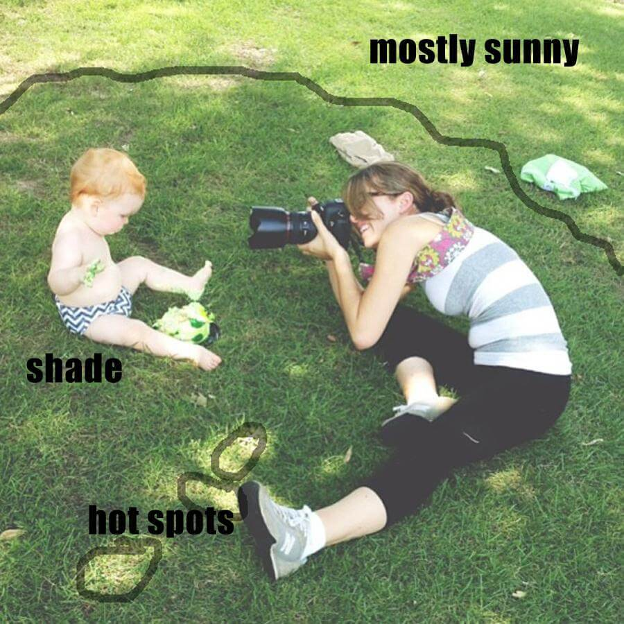 Cómo tomar fotografías en un día soleado