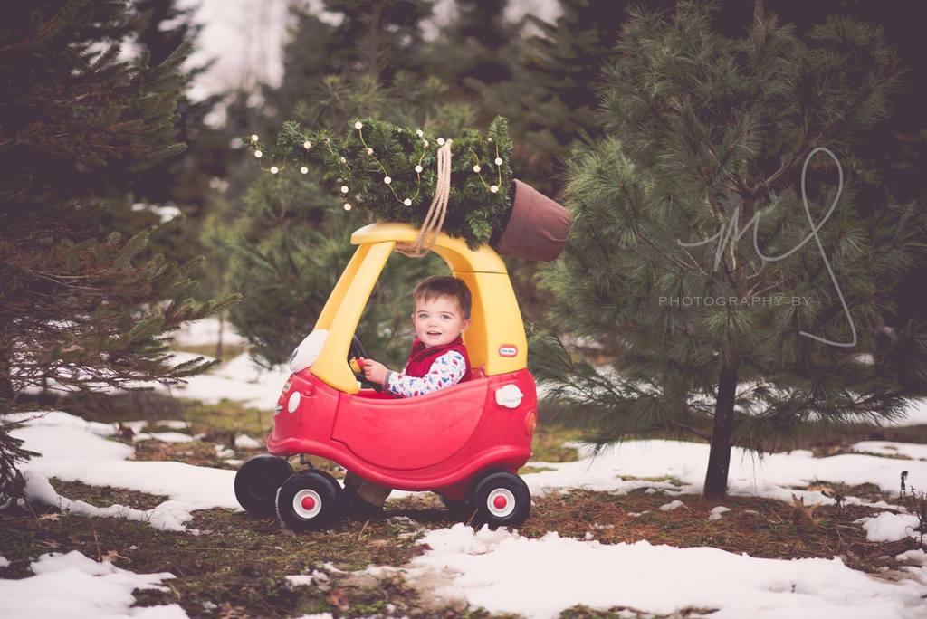 Foto de un niño que lleva un árbol de Navidad