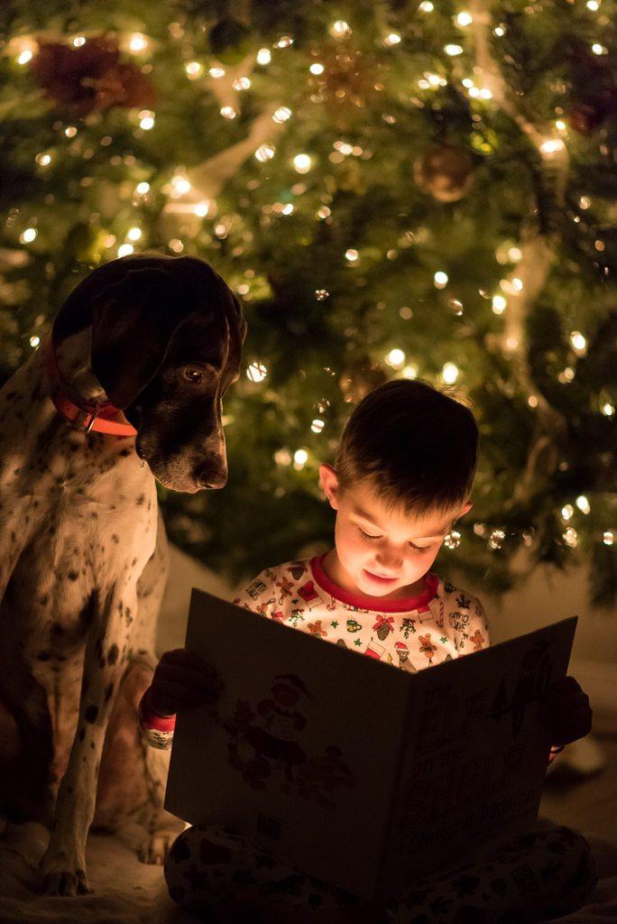 Foto del libro de lectura de niño y perro frente al árbol de Navidad