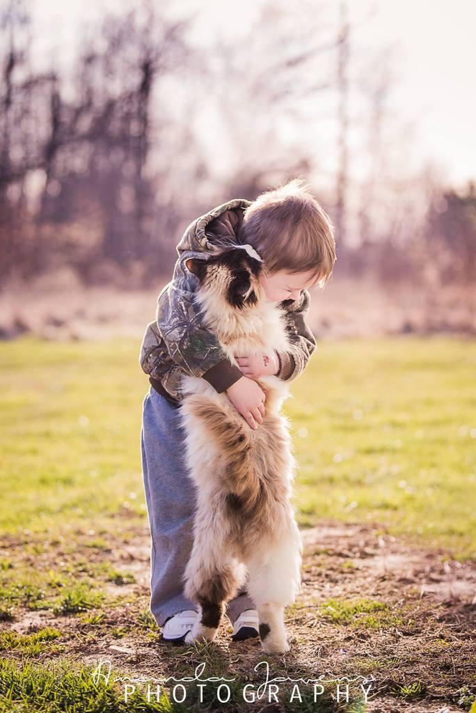 Niño sosteniendo un gato y abrazándolo