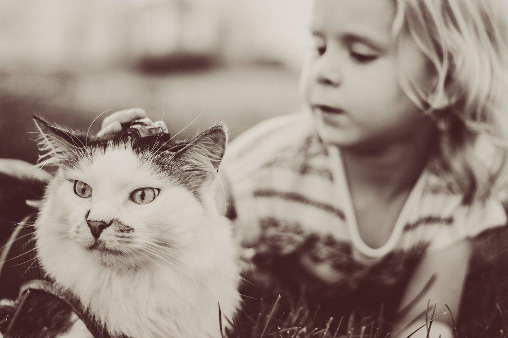 Chica acariciando a su gato