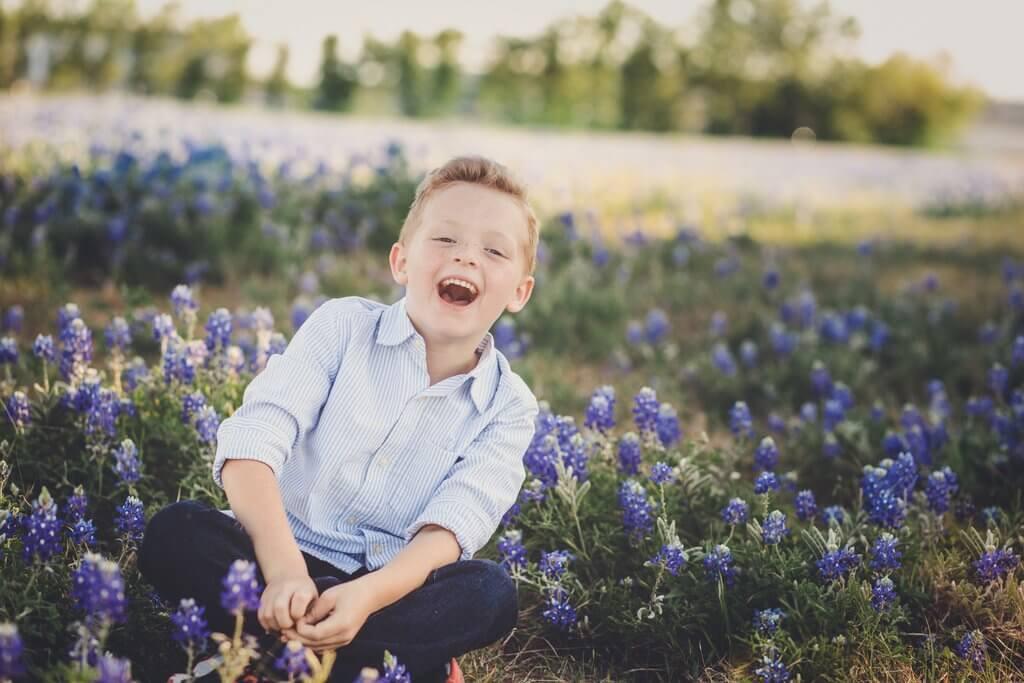 imágenes de bluebonnets texas