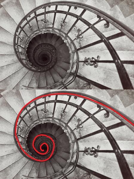 Líneas principales: uso de líneas curvas para componer mejores fotos