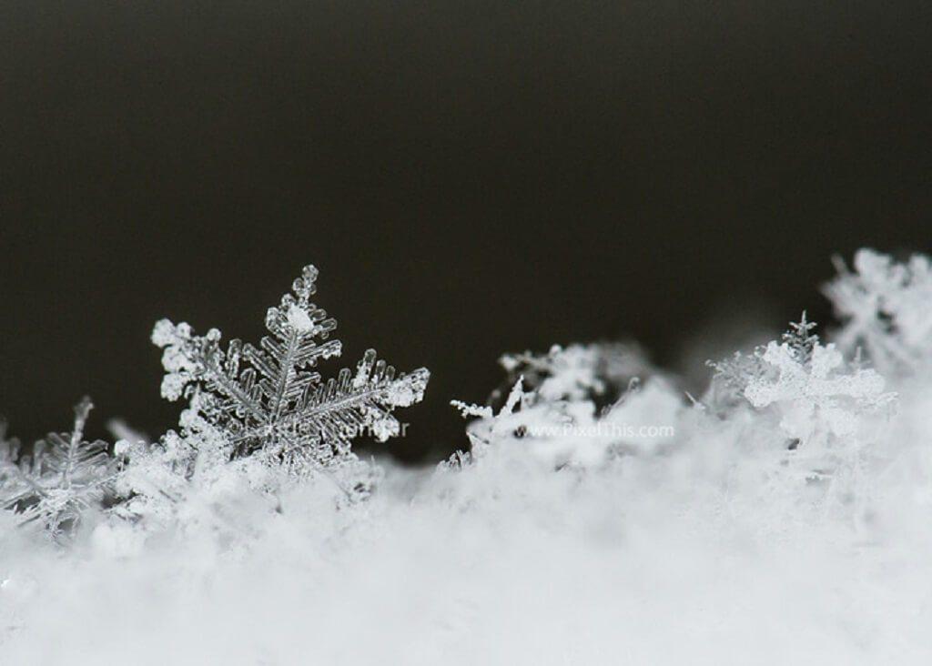 Foto macro de copo de nieve en la parte superior de la valla