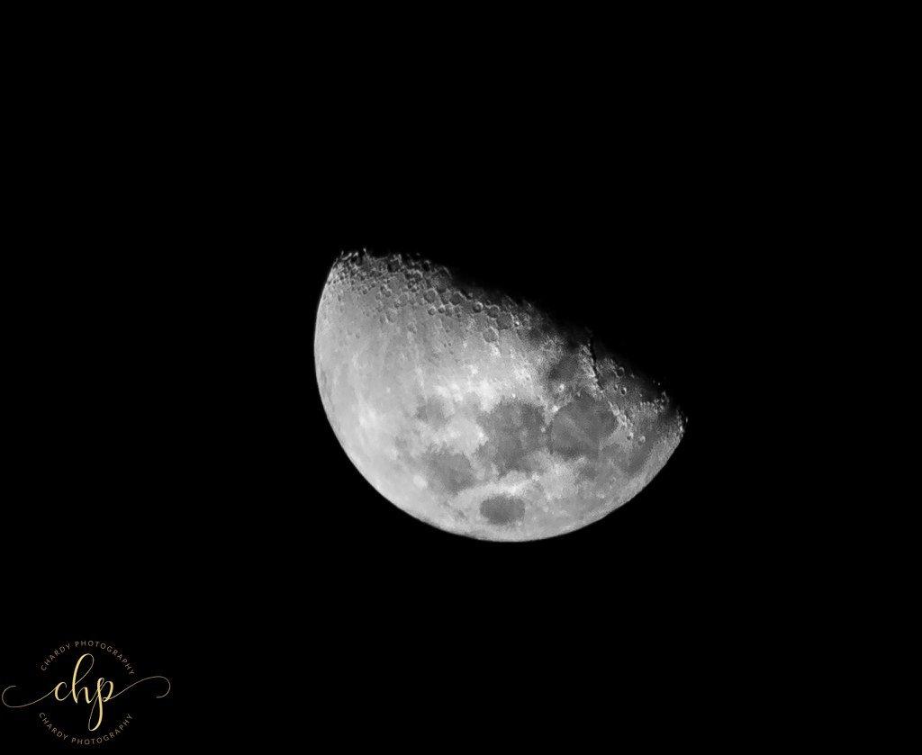 Foto nocturna muy detallada de la luna.