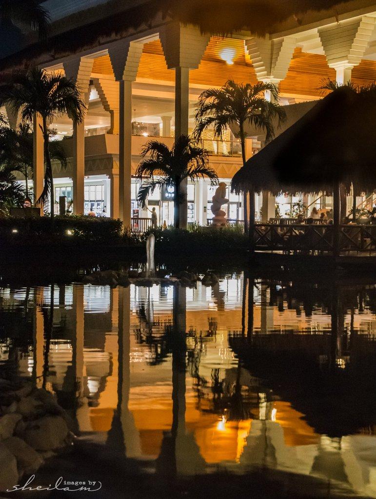 Foto nocturna del edificio y palmeras reflejadas en el agua