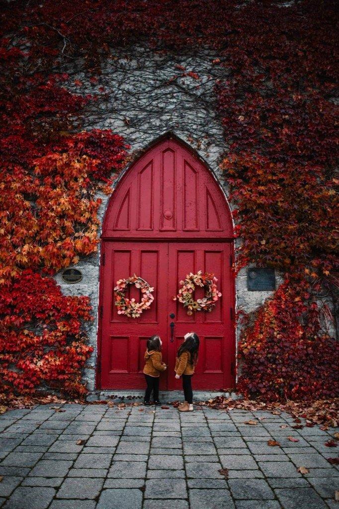 mejor foto de 2019 - Niños en el otoño