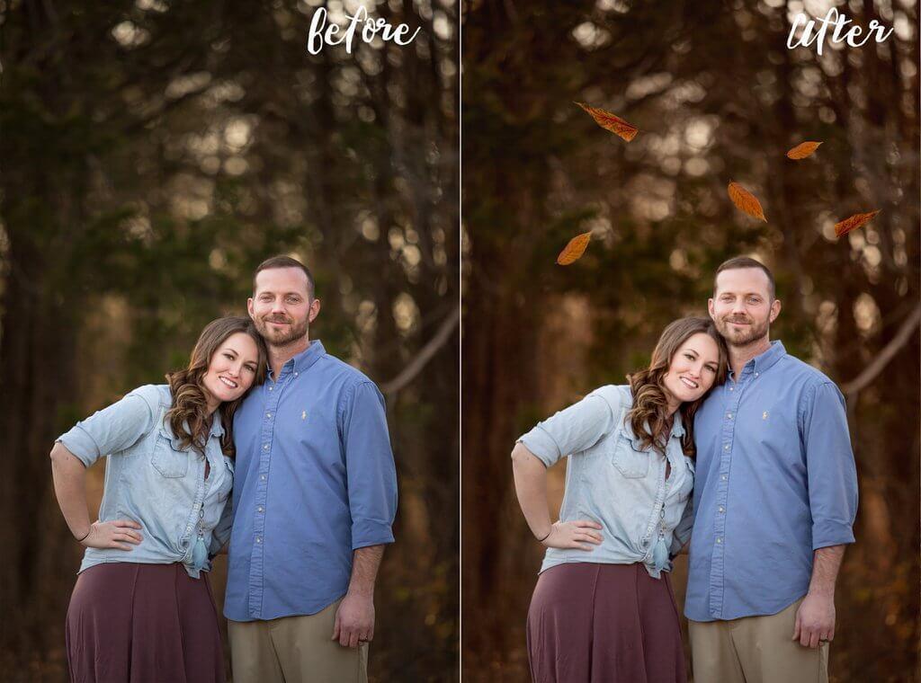 Superposiciones de hojas para Photoshop