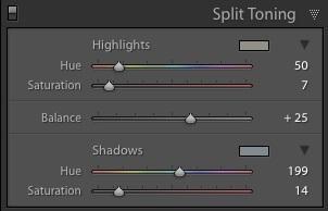 Cómo dividir el tono en Lightroom