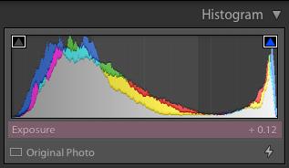 histograma de lightroom explicado