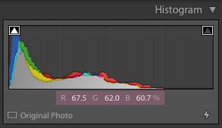 cómo usar el histograma en lightroom