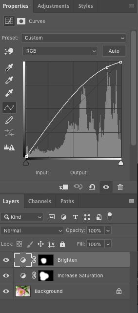 ¿Qué hace la herramienta Lazo en Photoshop?