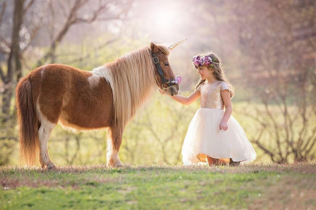 Hermosas Imágenes De Unicornio