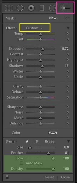 Flujo y densidad para pinceles de Lightroom