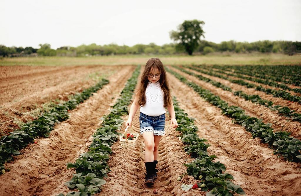Mejores Fotos 2018 - Chica caminando por campos de fresas