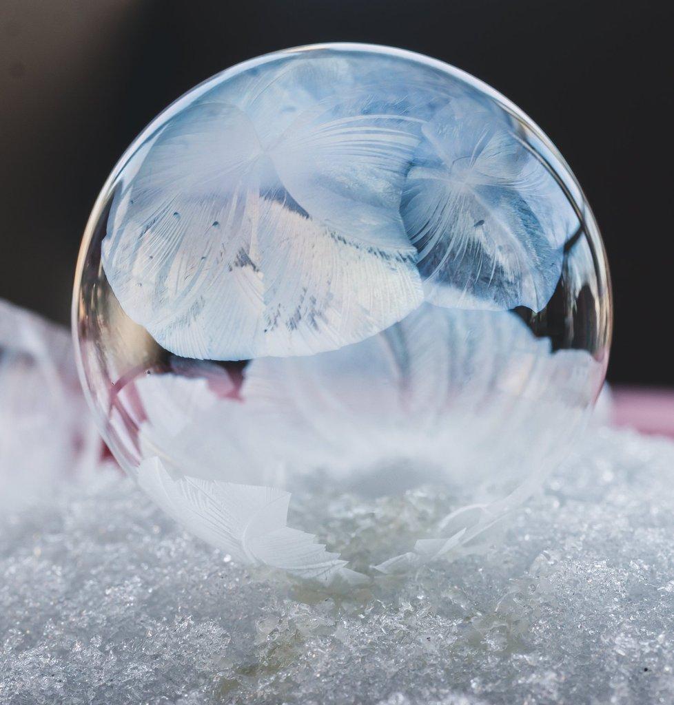 Las mejores fotos de 2018 - Foto macro de invierno