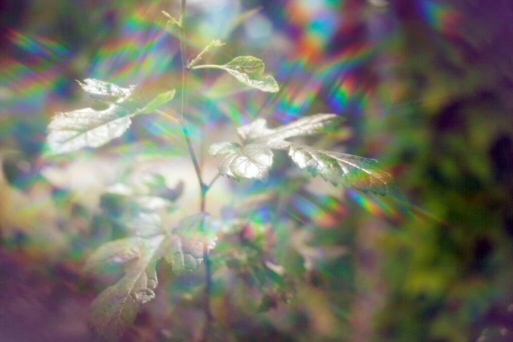 cómo conseguir el efecto arcoíris en las imágenes