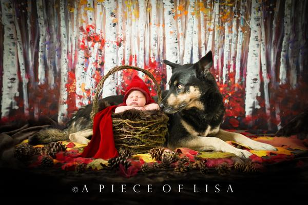 Foco del fotógrafo: una pieza de fotografía de Lisa