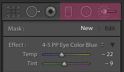 Conceptos básicos de la edición con pinceles y filtros en Lightroom |  Pretty Presets for Lightroom Tutorial