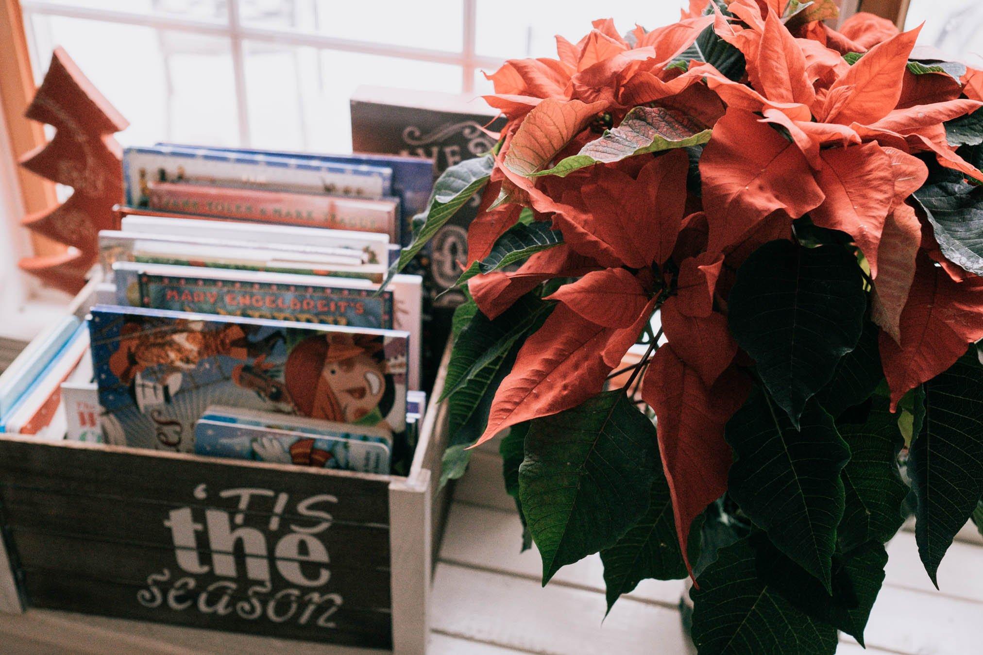 Foto de vacaciones de libros navideños y flor de pascua