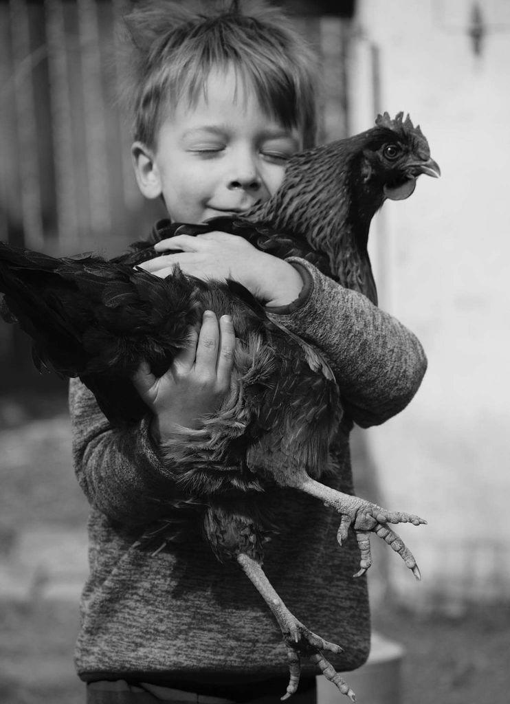 Niño sosteniendo un pollo - Pretty Presets Photo Challenge