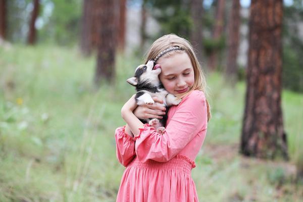 Ganadores del concurso de fotografía de mascotas: bonitos presets para Lightroom
