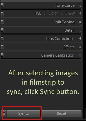 Botón de sincronización de Lightroom