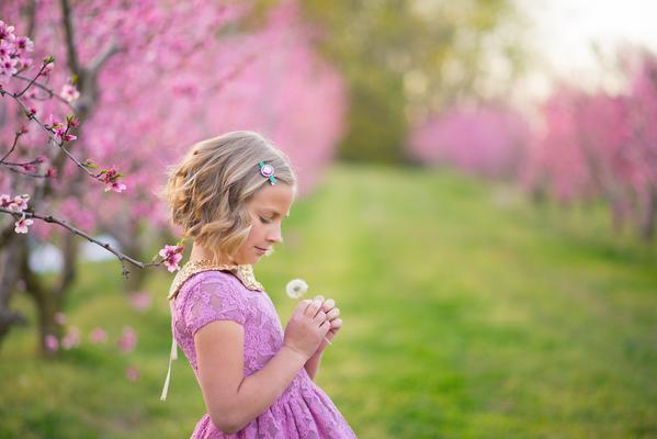 Lograr un balance de blancos perfecto con los presets de Enchanted Garden