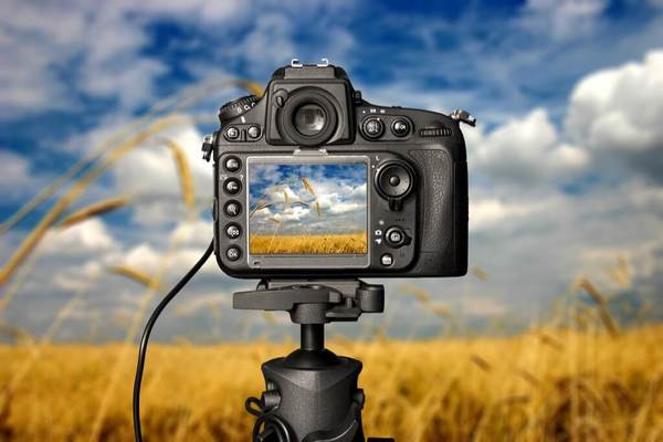 Cómo elegir la velocidad de obturación y la apertura para fotos más nítidas