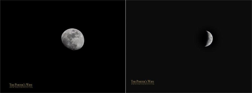 Encuentre inspiración fresca para su fotografía |  Bonitos presets para el tutorial de fotografía de Lightroom