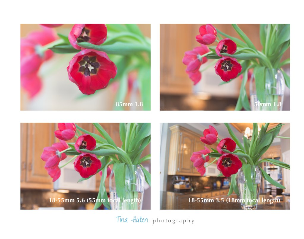 3 consejos para obtener mejores fotos en la cámara    Bonitos presets para el tutorial de fotografía de Lightroom