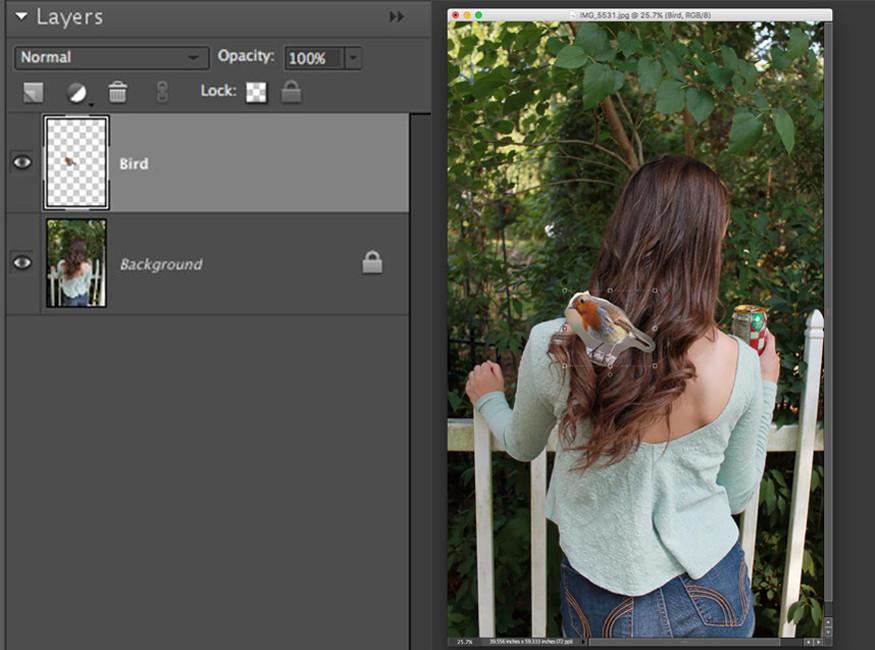 Copiar y pegar en Photoshop