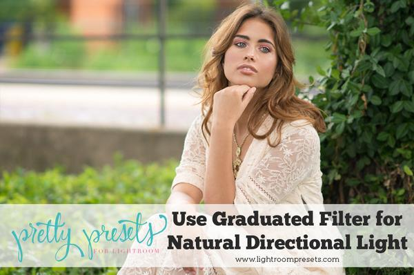 Use filtros graduados para agregar luz direccional