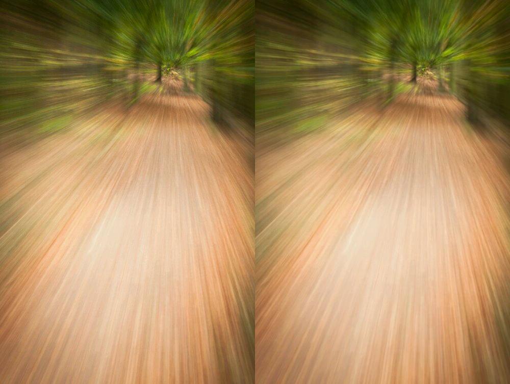 Domina la fotografía al aire libre con Zoom Burst hoy con estos consejos