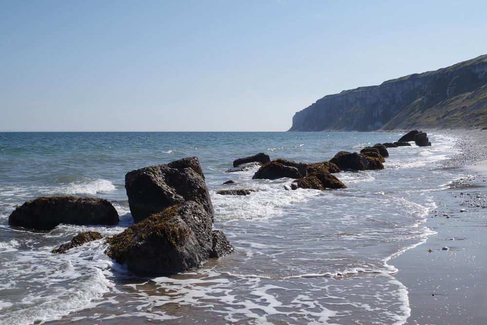 5 métodos para mejorar sus paisajes costeros