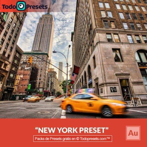 Aurora HDR Preset Nueva York