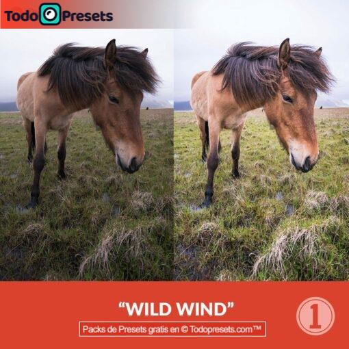 Capture One viento salvaje Preset
