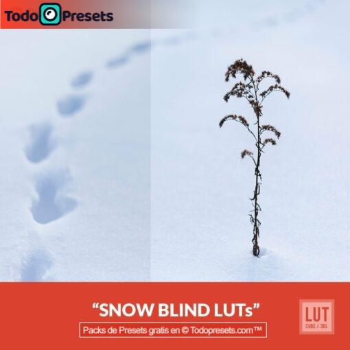 LUTs gratis Snow Blind