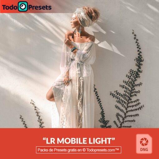Luz y brillo Presets DNG gratis