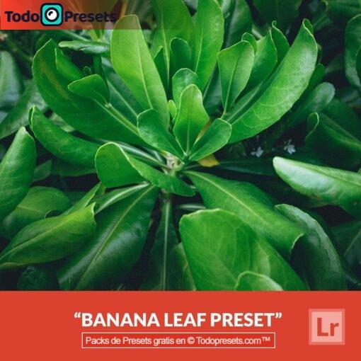 Hoja de plátano Preset de Lightroom gratis