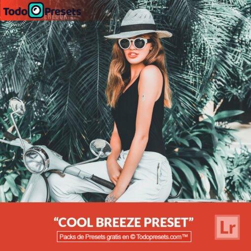 Lightroom Preset Cool Breeze