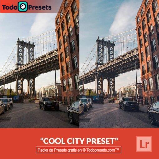 Lightroom Preset Cool City