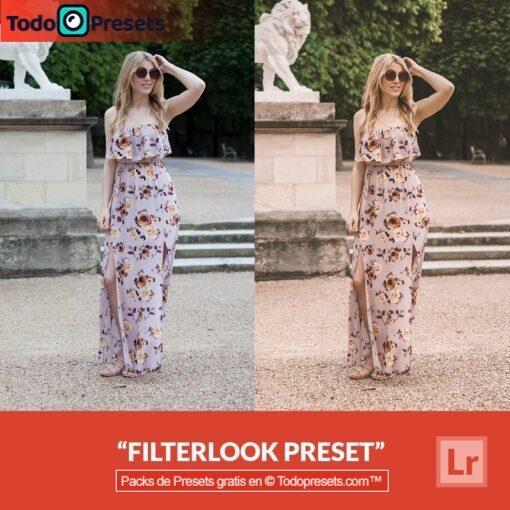 Filtro Preset gratis de Lightroom