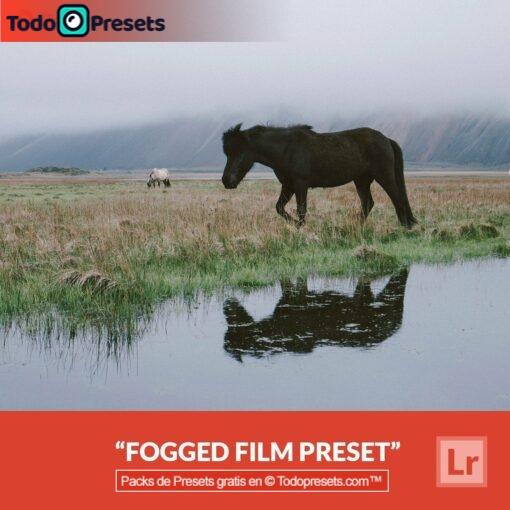 Película empañada Preset de Lightroom gratis