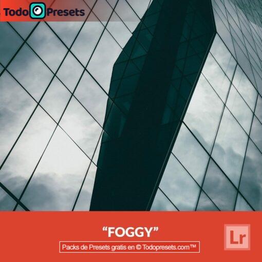 Lightroom Preset Foggy gratis