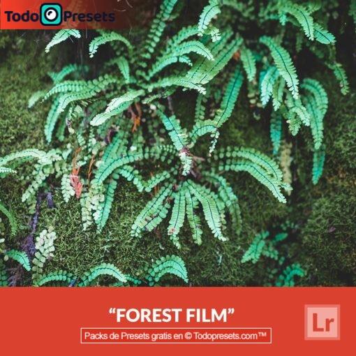 Película de bosque Preset de Lightroom gratis