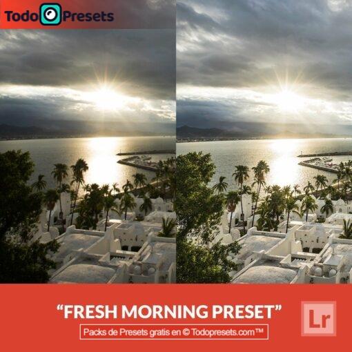 Mañana fresca Preset de Lightroom gratis