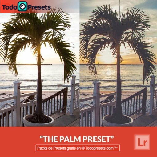 Lightroom Preset Palm gratis